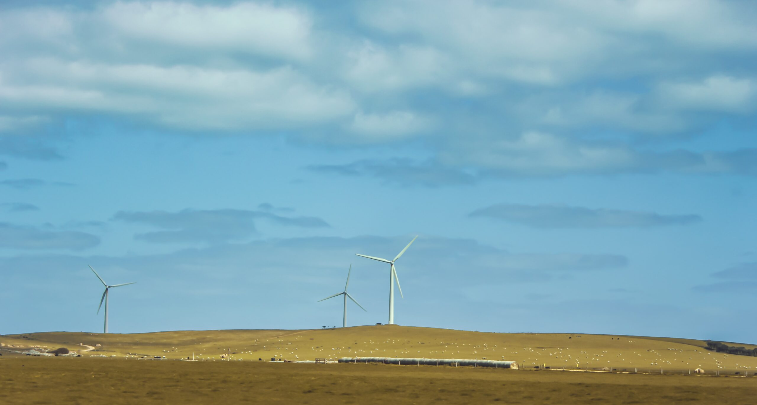 ESG Investing: What is it and how do I know if it's a good choice for me?